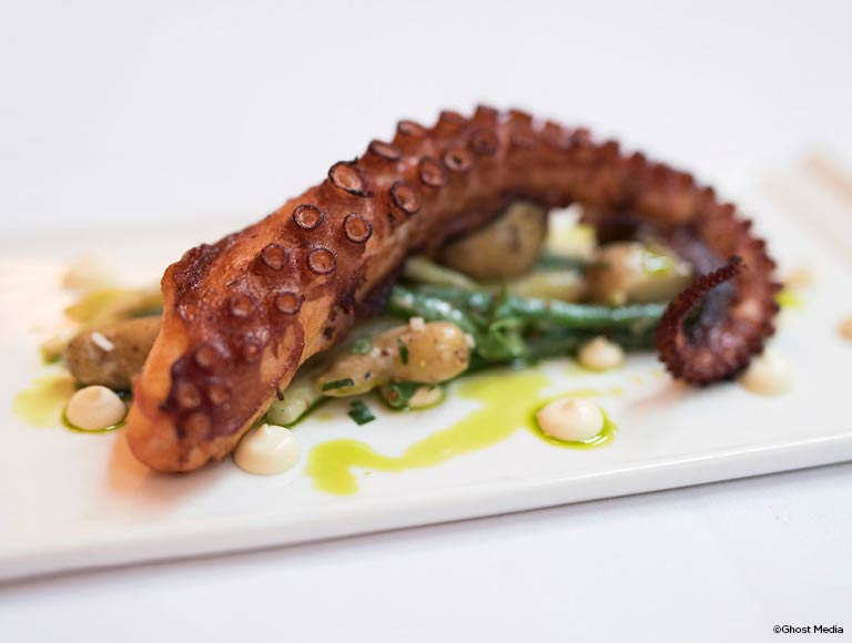 French-Mediterranean Restaurant, Octopus