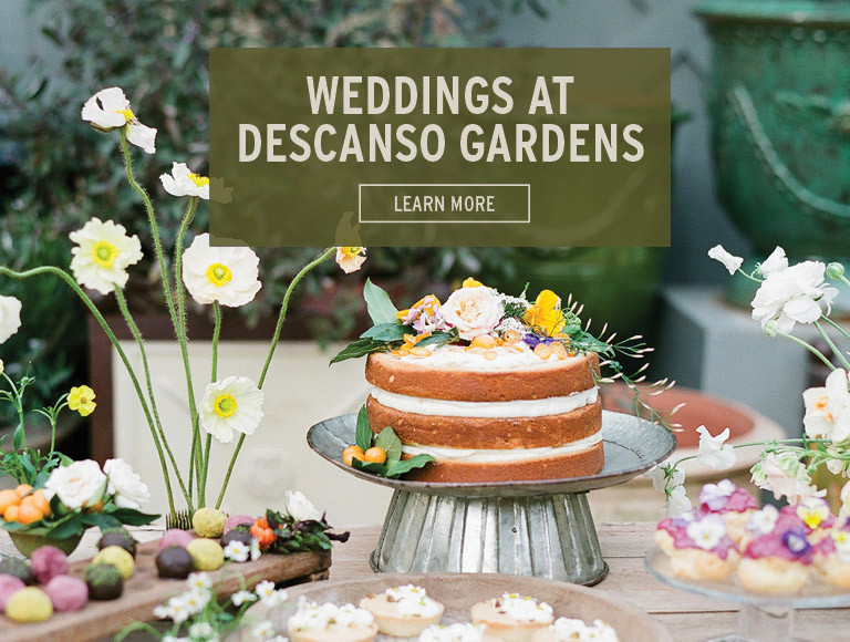 Learn More | Weddings at Descanso Gardens