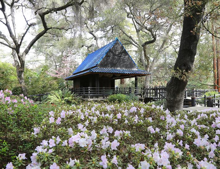 Japanese Garden outdoor event space at Descanso Gardens in La Cañada Flintridge, CA