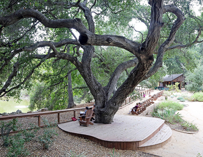 Lakeside outdoor event space at Descanso Gardens in La Cañada Flintridge, CA