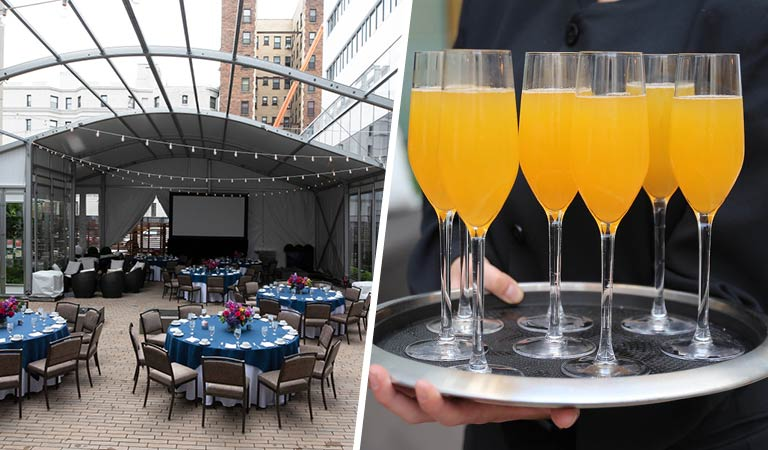 Patina 250 Courtyard and Mimosas, Holiday Planning Buffalo, NY