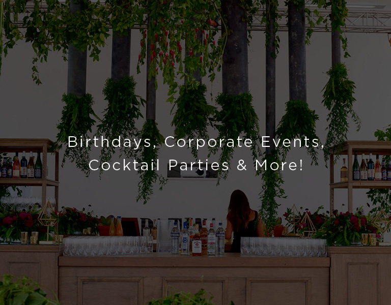 birthdays corporate events cocktail parties and more