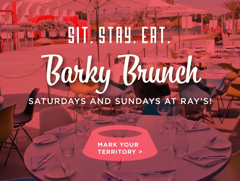 Bring Your Dog to Barky Brunch Saturdays & Sundays at Ray's