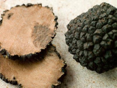 Truffles gain popularity despite high costs