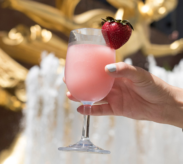 Frosé served at Summer Garden & Bar in NYC