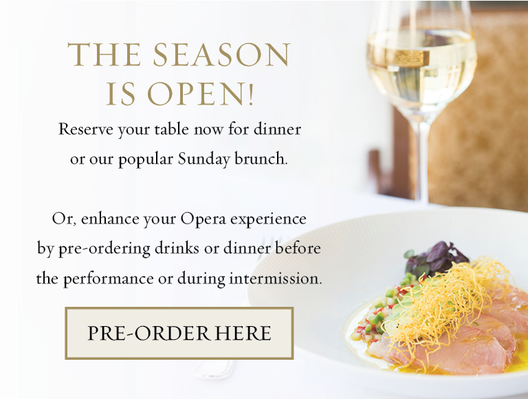 Enhance Your Opera Experience
