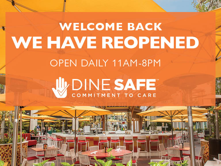 Welcome Back | We have Reopened | Open Daily 11am-8pm | Dine Safe | Commitment To Care