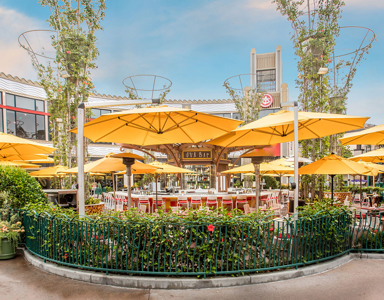 Outdoor circle bar at Uva Bar & Cafe in Downtown Disney