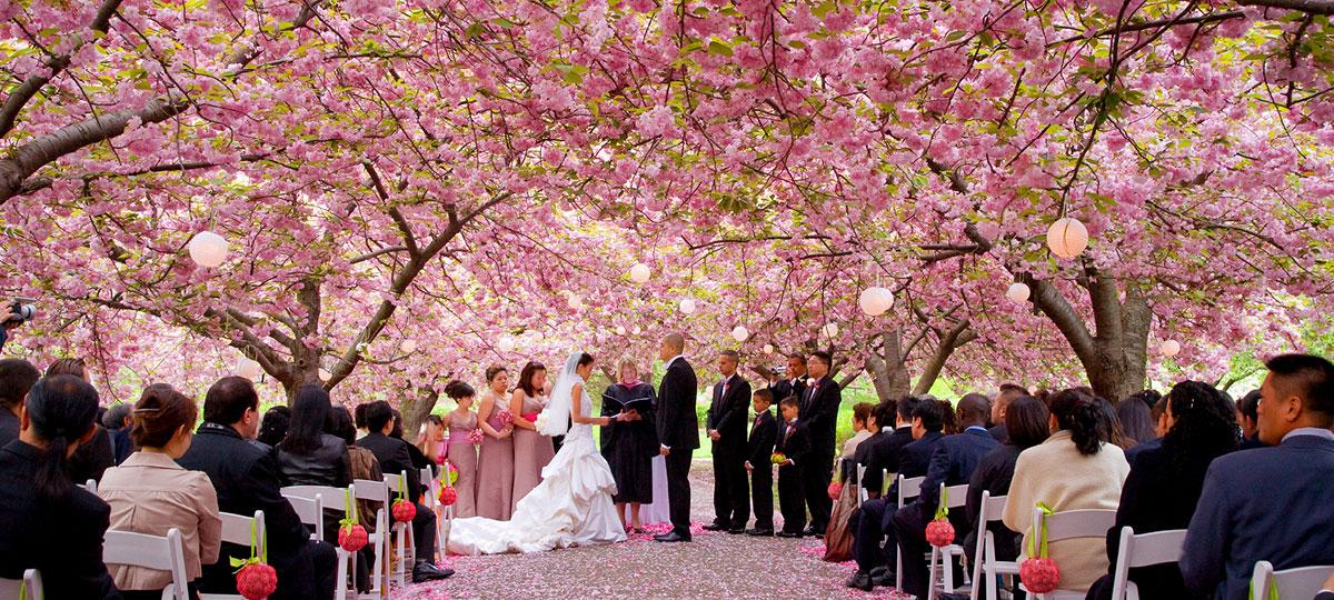 Small Wedding Venues Brooklyn