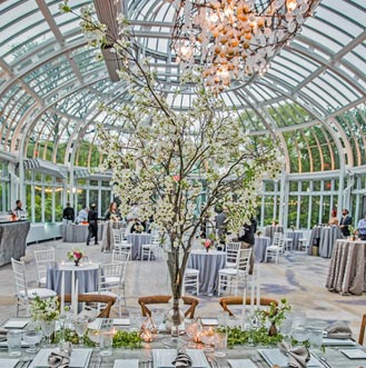 Palm House Interior. Wedding Halls In Brooklyn. Botanic Garden Wedding. Brooklyn  Botanic Garden Wedding