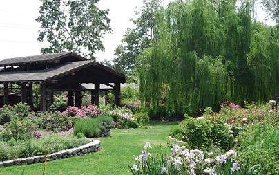 Descanso Gardens Rose Pavilion