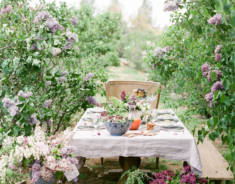 Summer outdoor brunch in lilac fields